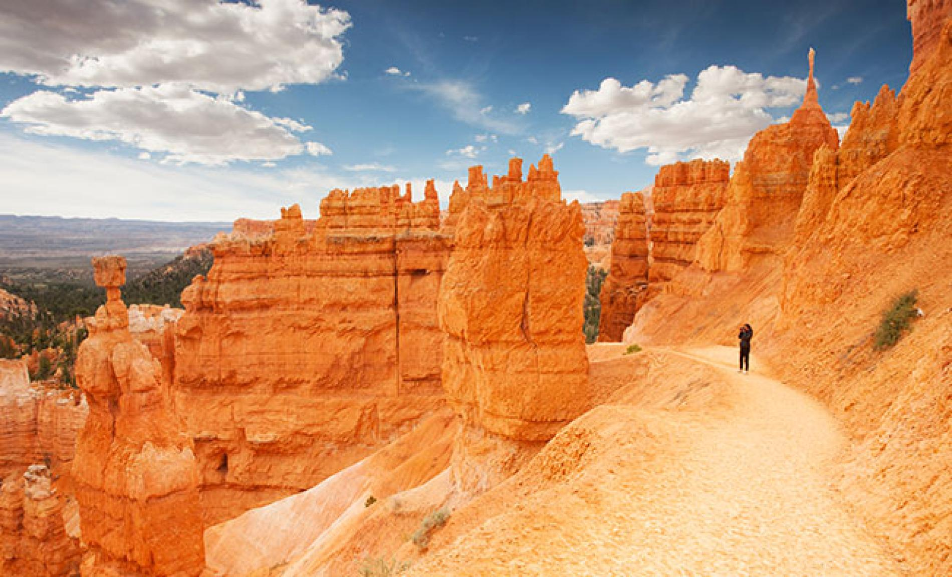 Grand Canyon, Bryce, & Zion National Park Tours   National ...