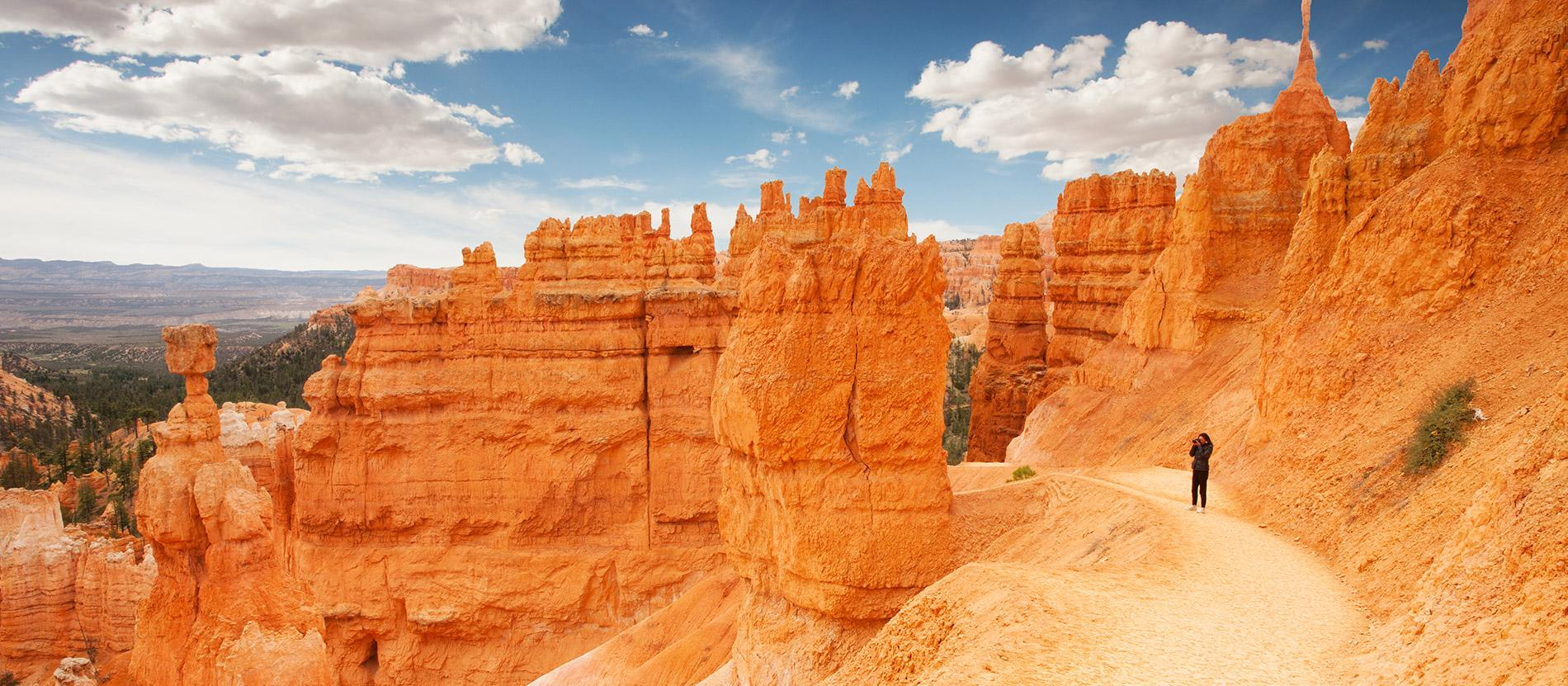 Grand Canyon, Bryce, and Zion National Parks