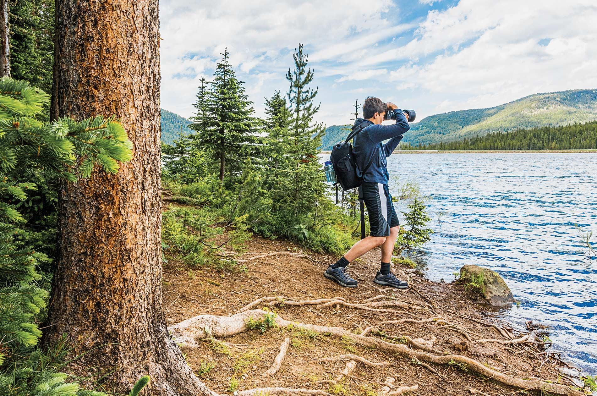 Yellowstone Wildlife Photography Workshops Amp Tours