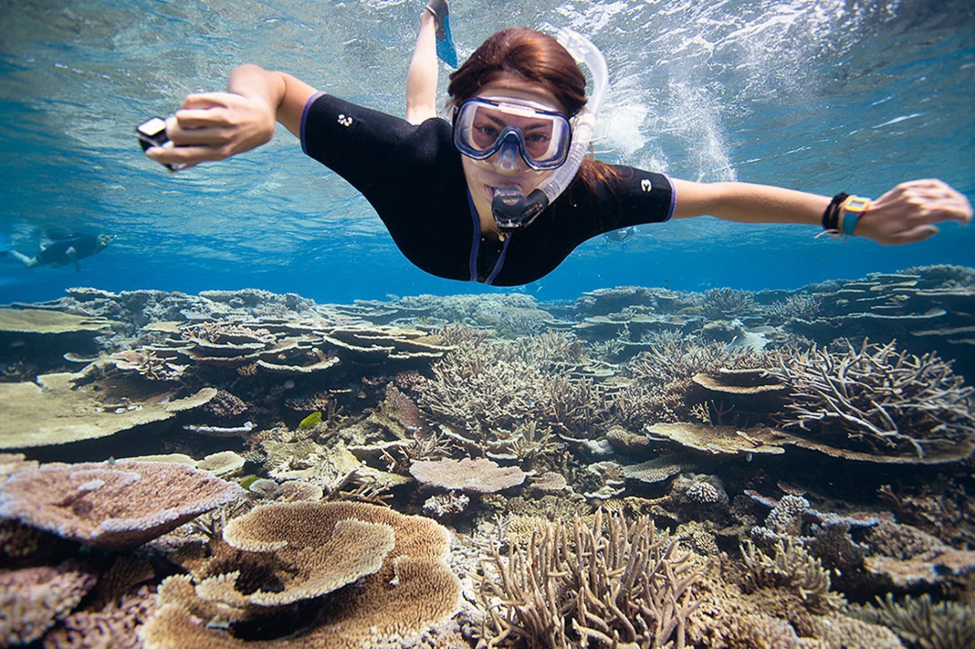 school student trips  u0026 travel programs to australia 2019