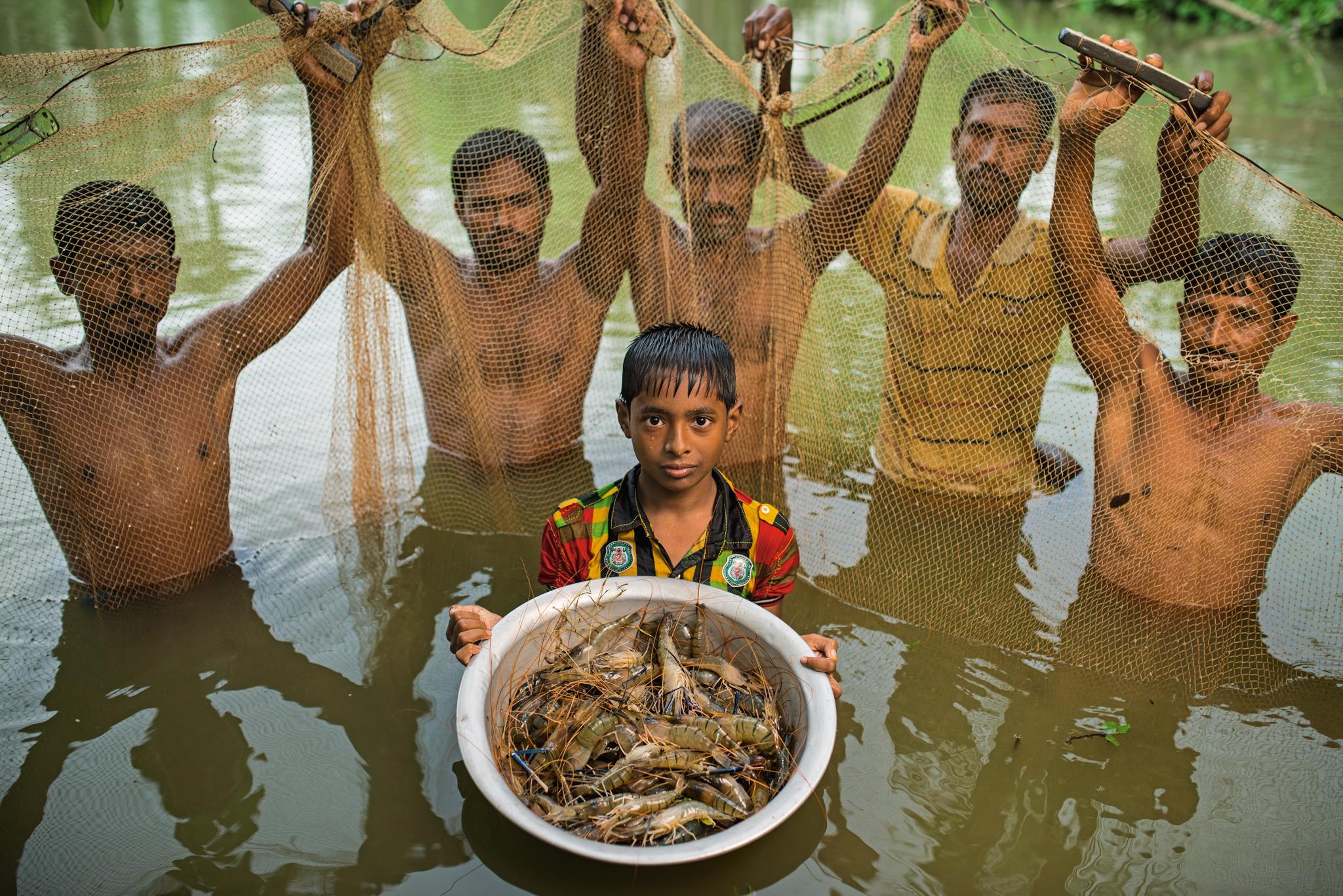 Fish aquarium in bangladesh - Picture Of A Fish Harvest In Bangladesh