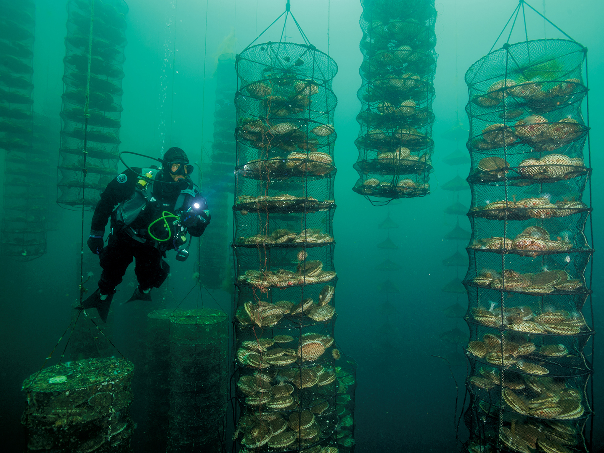 Aquaculture - National Geographic