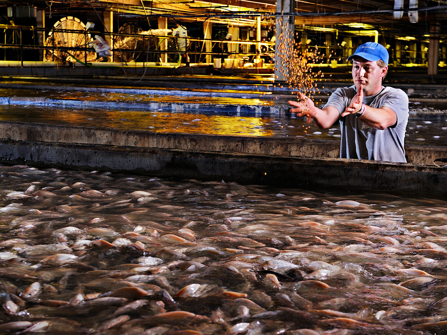Canada true patriot love foundation launches highway of for Virginia fish hatchery