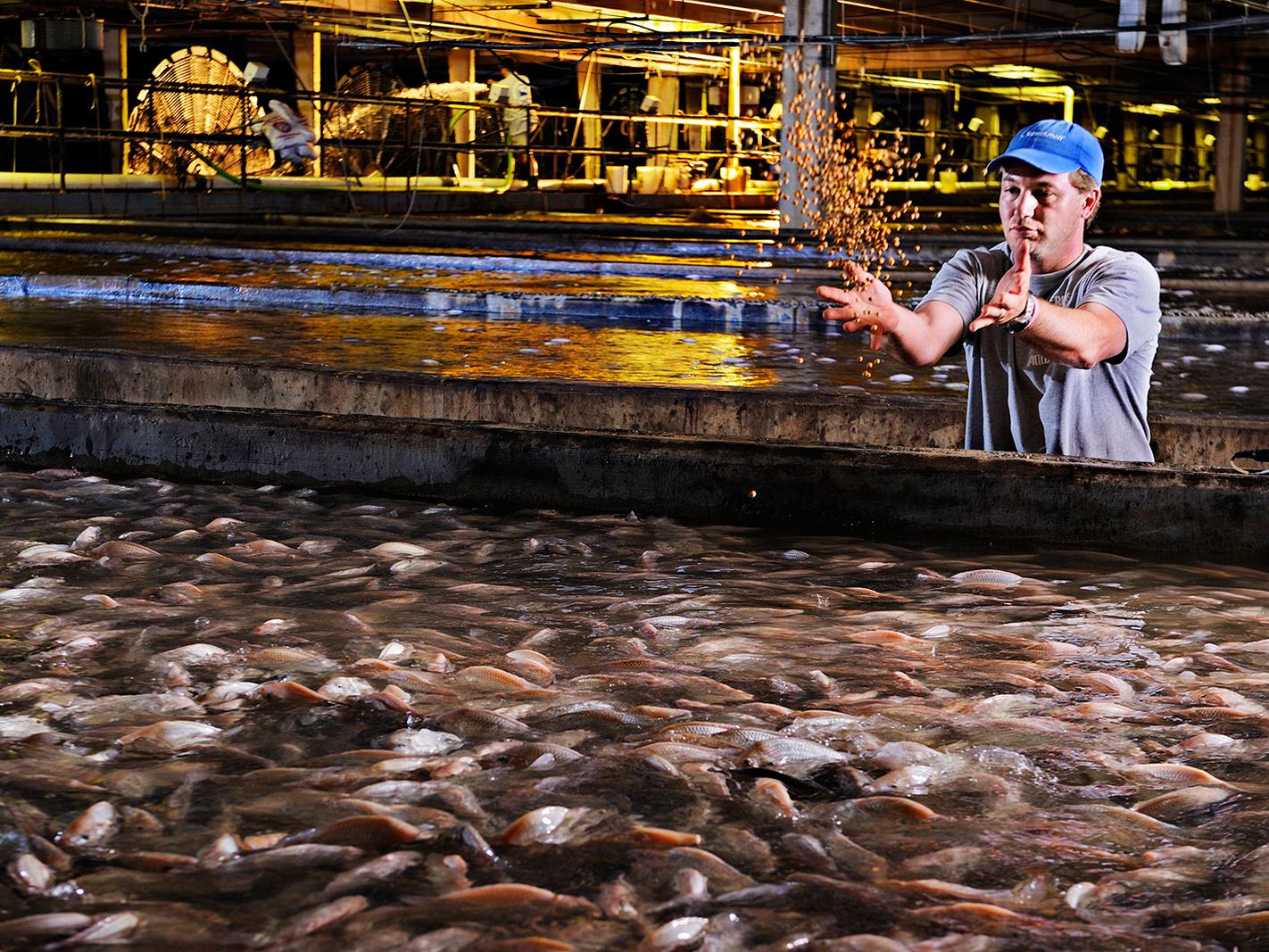 Indoor Shrimp Farming Equipment