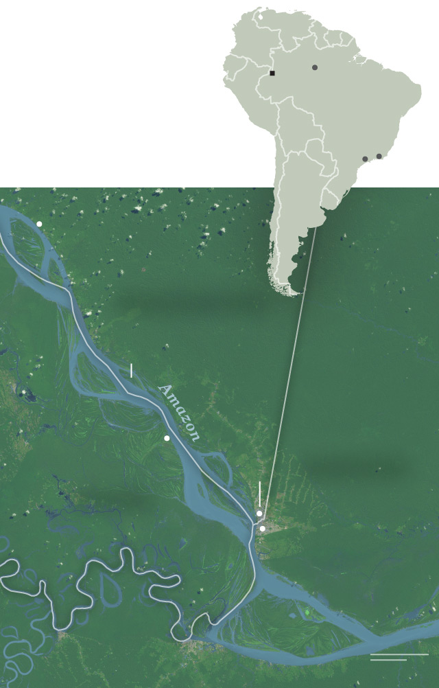 Special report the amazon is the new frontier for deadly wildlife tres fronteras gumiabroncs Gallery