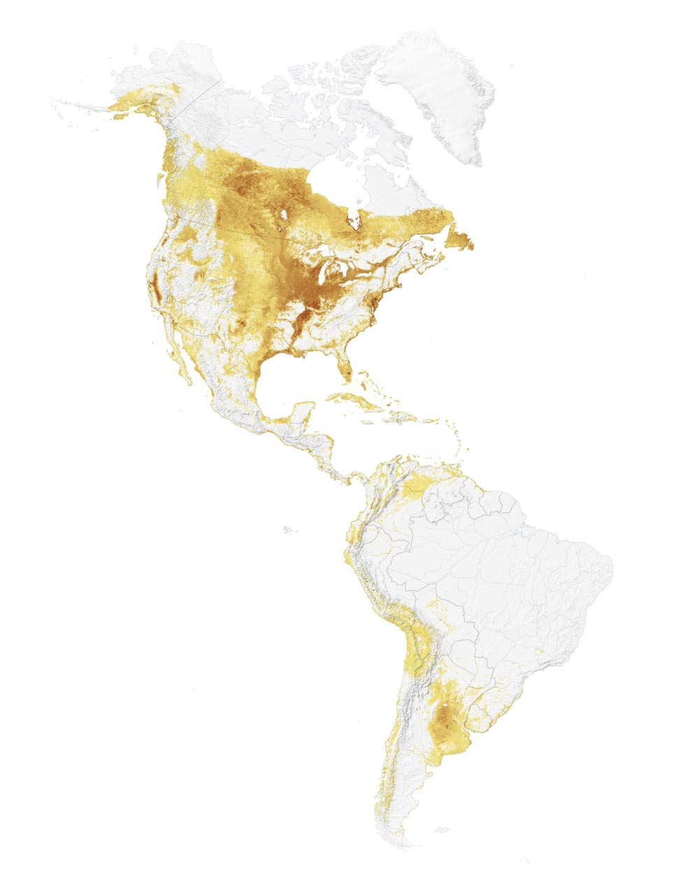 Interactive Map: See How Birds Migrate Throughout the