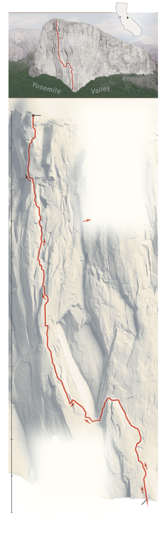 what route did alex honnold take
