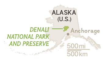 How Can 6 Million Acres At Denali Still Not Be Enough