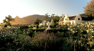 Images: the Steenberg winery